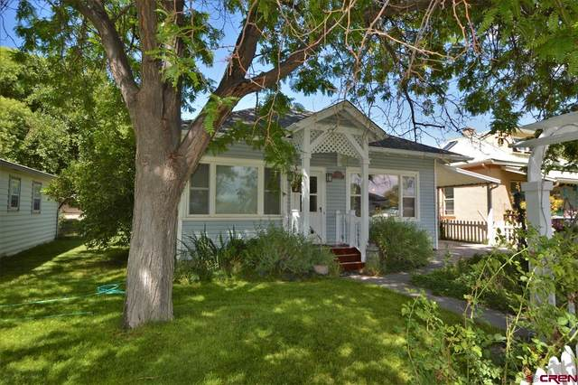 358 W Hotchkiss Avenue, Hotchkiss, CO 81419 (MLS #785323) :: Dawn Howe Group   Keller Williams Colorado West Realty