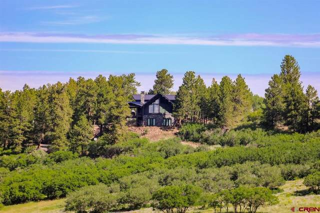 177 County 61V Road, Placerville, CO 81430 (MLS #785324) :: Dawn Howe Group   Keller Williams Colorado West Realty
