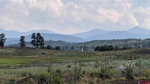 X Tierra Del Oro Drive, Pagosa Springs, CO 81147 (MLS #785327) :: Dawn Howe Group   Keller Williams Colorado West Realty