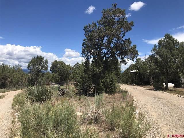 2180 Cr 305, Durango, CO 81303 (MLS #785332) :: Dawn Howe Group | Keller Williams Colorado West Realty