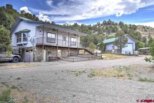 1525 S Highway 550 Highway, Durango, CO 81303 (MLS #785347) :: Dawn Howe Group | Keller Williams Colorado West Realty