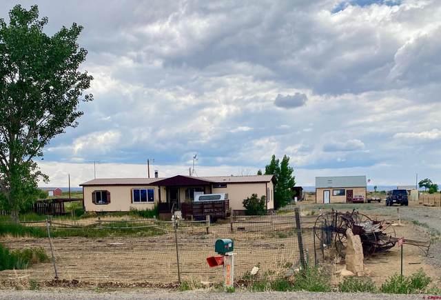 2019 1300 Road, Delta, CO 81410 (MLS #785363) :: Dawn Howe Group   Keller Williams Colorado West Realty