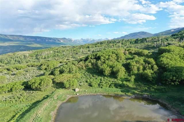 TBD Big Cimarron Tract 5, Cimarron, CO 81403 (MLS #785381) :: Dawn Howe Group   Keller Williams Colorado West Realty