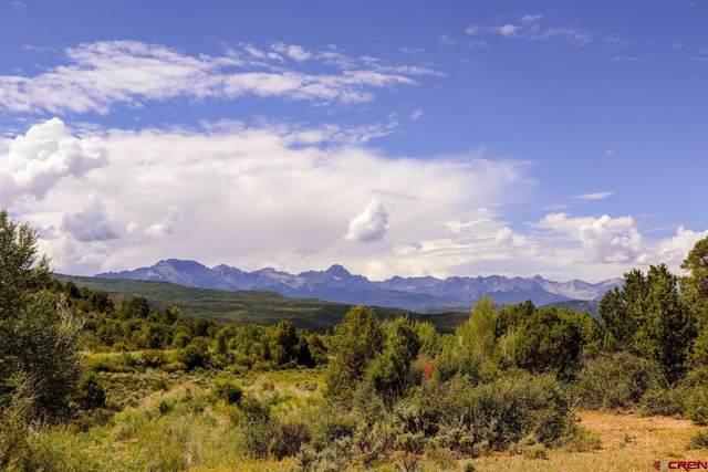 2879 County Road 10, Ridgway, CO 81432 (MLS #785382) :: Dawn Howe Group   Keller Williams Colorado West Realty