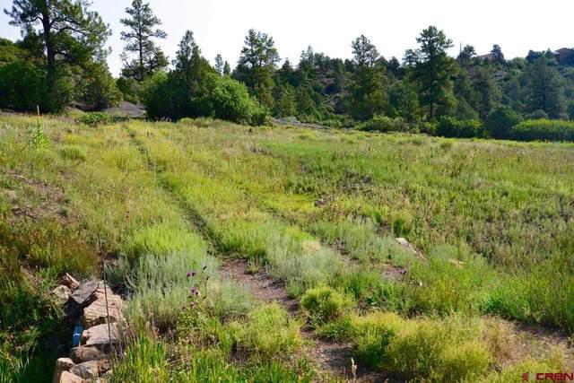 121 Elbert Place, Pagosa Springs, CO 81147 (MLS #785545) :: The Howe Group   Keller Williams Colorado West Realty