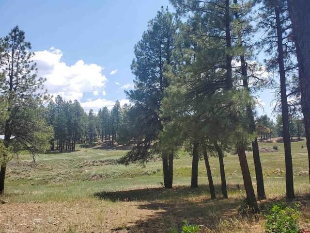 841 Beaver Creek Drive, Bayfield, CO 81122 (MLS #785608) :: The Howe Group | Keller Williams Colorado West Realty