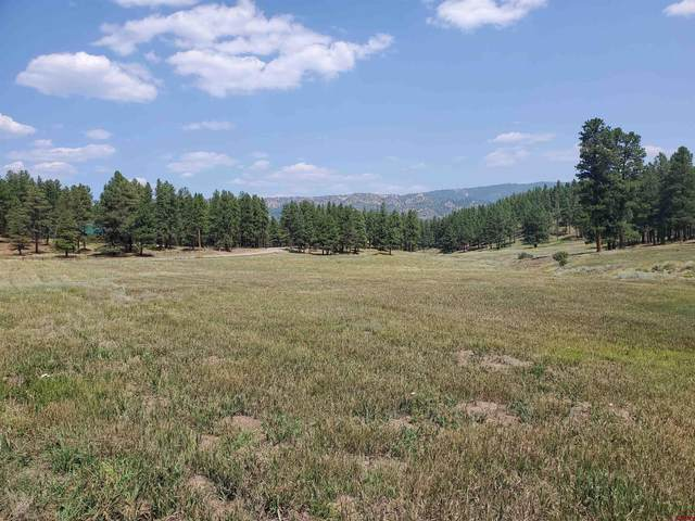 Lot 39 Beaver Creek Drive, Bayfield, CO 81122 (MLS #785619) :: The Howe Group | Keller Williams Colorado West Realty