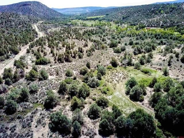 Lot 1-A Thoroughbred Road, Durango, CO 81301 (MLS #785635) :: Durango Mountain Realty