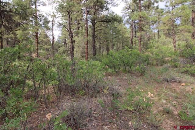128 Cat Creek Overlook, Pagosa Springs, CO 81147 (MLS #785682) :: The Howe Group | Keller Williams Colorado West Realty