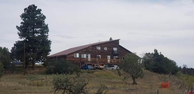 29502 Hwy 160, Durango, CO 81303 (MLS #785700) :: The Howe Group | Keller Williams Colorado West Realty
