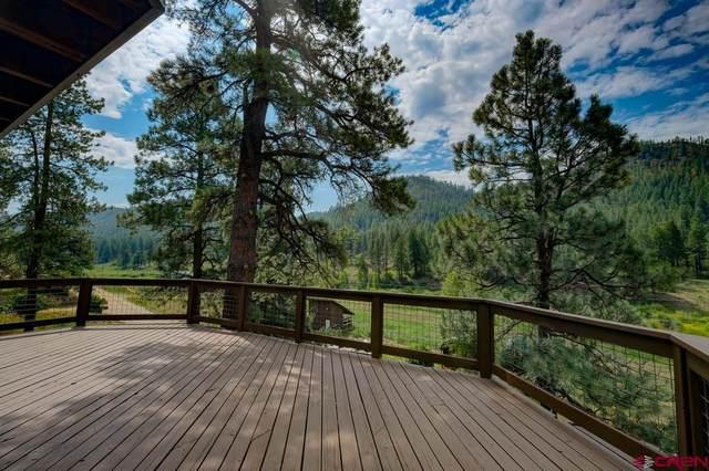 1759 Bear Creek Road, Bayfield, CO 81122 (MLS #785702) :: The Howe Group | Keller Williams Colorado West Realty