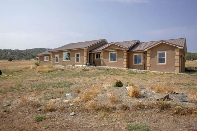 38156 Fruitland Mesa Road, Crawford, CO 81419 (MLS #785710) :: The Howe Group   Keller Williams Colorado West Realty