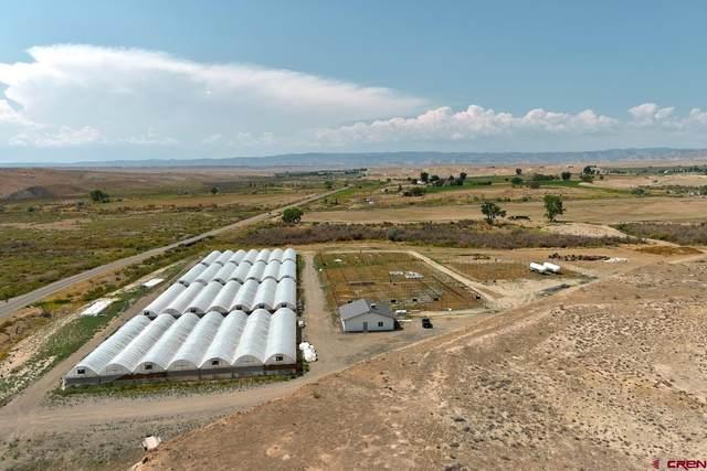 Greenhouses Old 6 & 50, Mack, CO 81525 (MLS #785727) :: The Howe Group | Keller Williams Colorado West Realty