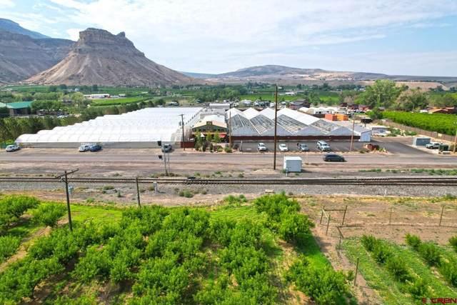 1041 N River Road Greenhouses, Palisade, CO 81526 (MLS #785729) :: The Howe Group   Keller Williams Colorado West Realty