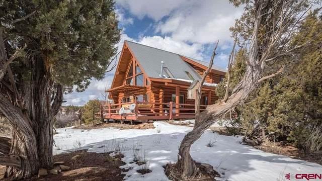 11145 Road 20, Cortez, CO 81321 (MLS #785784) :: The Howe Group | Keller Williams Colorado West Realty