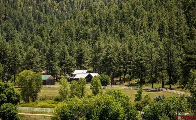 71 Aspen Road & 390 Rainbow R, Pagosa Springs, CO 81147 (MLS #785786) :: The Howe Group   Keller Williams Colorado West Realty