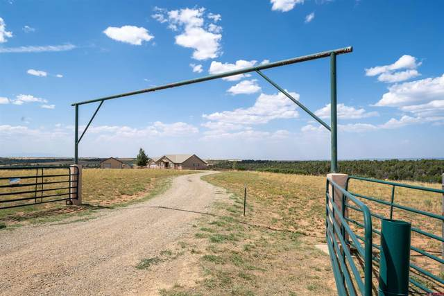 15811 Road Z, Yellow Jacket, CO 81335 (MLS #785793) :: The Howe Group | Keller Williams Colorado West Realty