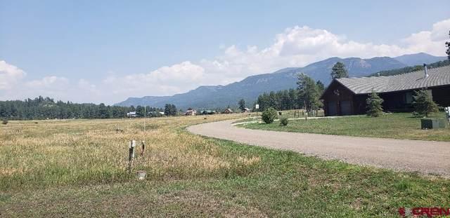 487 Alpine Drive, Pagosa Springs, CO 81147 (MLS #785888) :: The Howe Group | Keller Williams Colorado West Realty