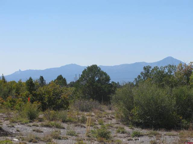 TBD Road P.2 Ranch, Mancos, CO 81328 (MLS #785898) :: The Howe Group   Keller Williams Colorado West Realty