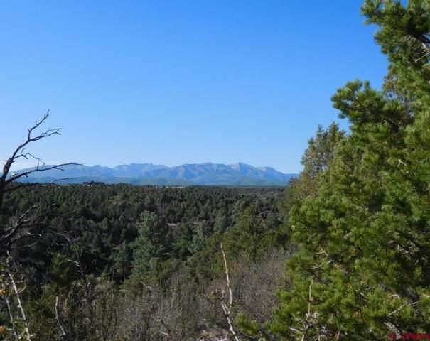 826 Shalako Canyon Road, Hesperus, CO 81326 (MLS #785899) :: Durango Mountain Realty