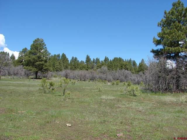 X Industrial Cir  Lot 46, Pagosa Springs, CO 81147 (MLS #785904) :: The Howe Group | Keller Williams Colorado West Realty