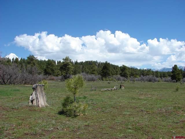 X Industrial Cir  Lot 47, Pagosa Springs, CO 81147 (MLS #785909) :: The Howe Group | Keller Williams Colorado West Realty