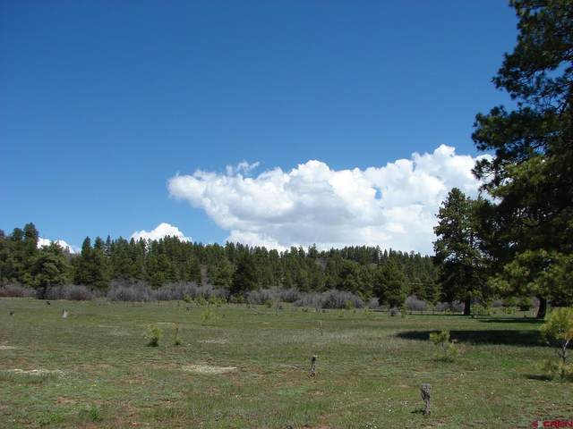 X Industrial Cir  Lot 48, Pagosa Springs, CO 81147 (MLS #785910) :: The Howe Group | Keller Williams Colorado West Realty