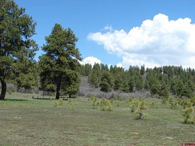 X Industrial Cir  Lot 49, Pagosa Springs, CO 81147 (MLS #785911) :: The Howe Group | Keller Williams Colorado West Realty