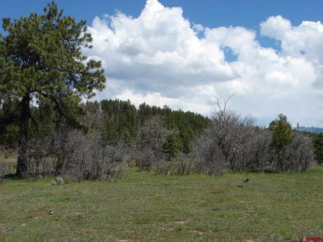 X Industrial Cir  Lot 50, Pagosa Springs, CO 81147 (MLS #785912) :: The Howe Group | Keller Williams Colorado West Realty