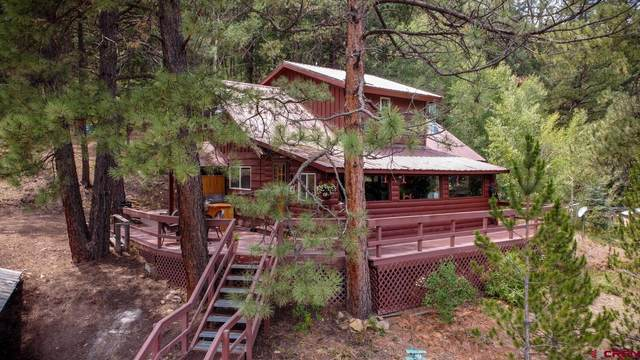 295 & X County Road 339, Pagosa Springs, CO 81147 (MLS #785923) :: The Howe Group | Keller Williams Colorado West Realty