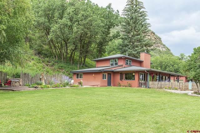 661 Cr 204, Durango, CO 81301 (MLS #785926) :: Durango Mountain Realty
