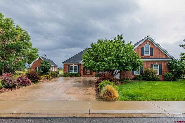 2014 Otter Pond Circle, Montrose, CO 81401 (MLS #786003) :: The Howe Group | Keller Williams Colorado West Realty