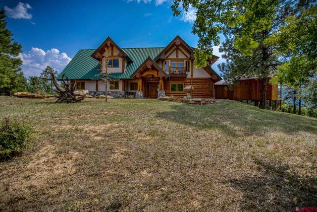 219 S Cougar Court, Pagosa Springs, CO 81147 (MLS #786008) :: The Howe Group | Keller Williams Colorado West Realty