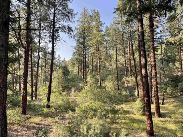 TBD Glacier Cliff Drive, Durango, CO 81301 (MLS #786069) :: Durango Mountain Realty