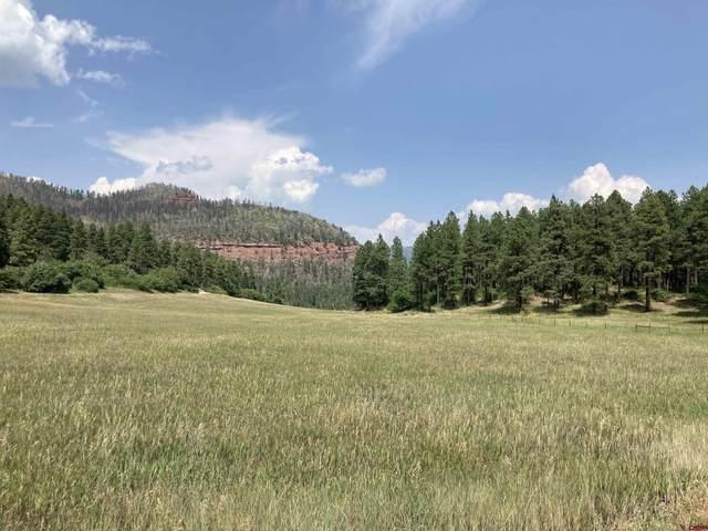 TBD High Meadows Ranch, Durango, CO 81301 (MLS #786074) :: Durango Mountain Realty