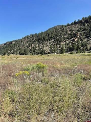 101 Vista Del Rio Drive, South Fork, CO 81154 (MLS #786078) :: The Howe Group   Keller Williams Colorado West Realty