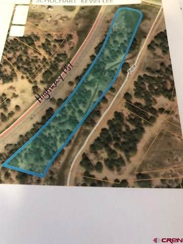 17580 Highway 151, Arboles, CO 81121 (MLS #786110) :: The Howe Group   Keller Williams Colorado West Realty
