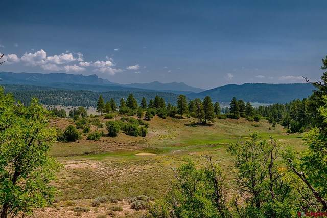 567 Blue Spruce Drive, Pagosa Springs, CO 81147 (MLS #786163) :: The Howe Group   Keller Williams Colorado West Realty