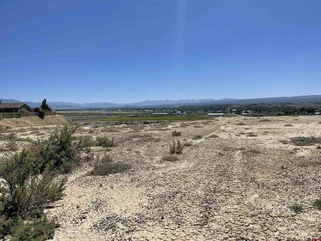 tbd Juniper Road, Montrose, CO 81401 (MLS #786227) :: The Howe Group   Keller Williams Colorado West Realty