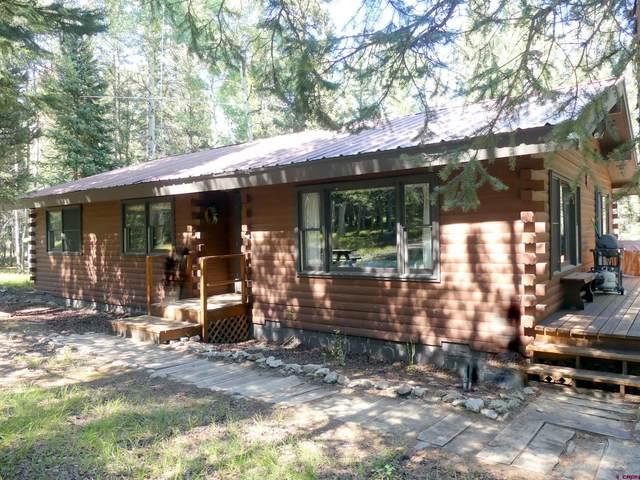 137 Balsam Road, Cimarron, CO 81220 (MLS #786238) :: The Howe Group | Keller Williams Colorado West Realty
