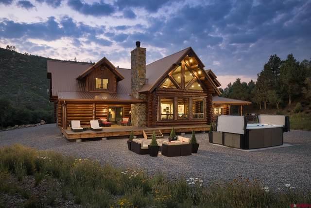 6590 Road 46, Mancos, CO 81328 (MLS #786250) :: Berkshire Hathaway HomeServices Western Colorado Properties
