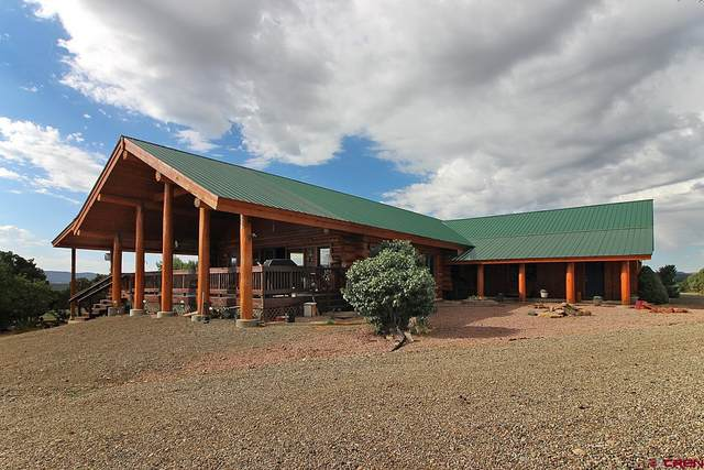 11370 Road 38.5, Mancos, CO 81328 (MLS #786309) :: The Howe Group | Keller Williams Colorado West Realty