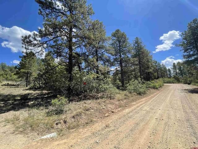 201 Doc Adams Drive, Pagosa Springs, CO 81147 (MLS #786347) :: The Howe Group | Keller Williams Colorado West Realty
