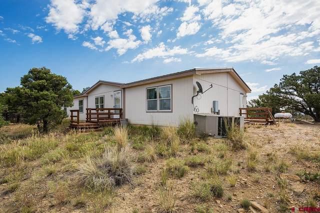 552 Vision Way, Bayfield, CO 81122 (MLS #786441) :: The Howe Group   Keller Williams Colorado West Realty