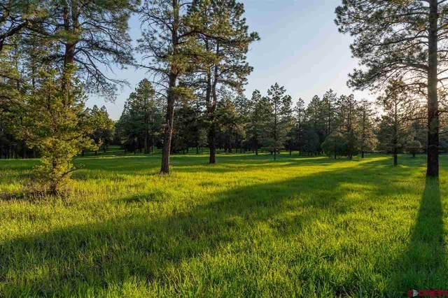 TBD Road 36.5, Mancos, CO 81328 (MLS #786453) :: Berkshire Hathaway HomeServices Western Colorado Properties