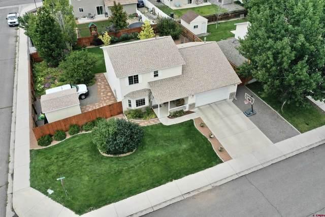 2725 Tender Lane, Montrose, CO 81401 (MLS #786475) :: The Howe Group | Keller Williams Colorado West Realty
