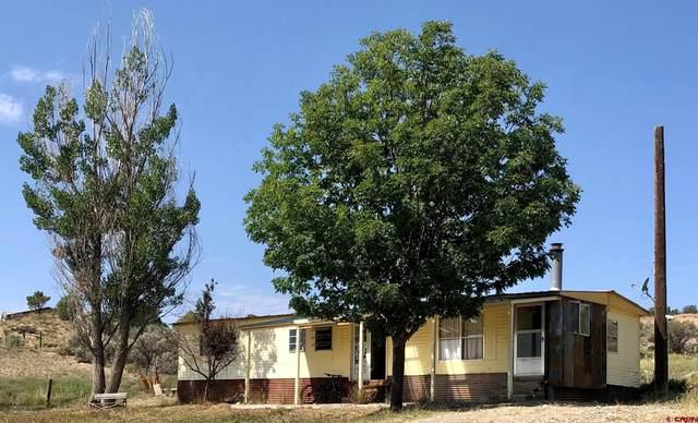 5283 County Road 213, Durango, CO 81303 (MLS #786476) :: Durango Mountain Realty