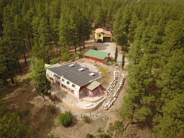 131 Badger Road, Bayfield, CO 81122 (MLS #786478) :: The Howe Group   Keller Williams Colorado West Realty