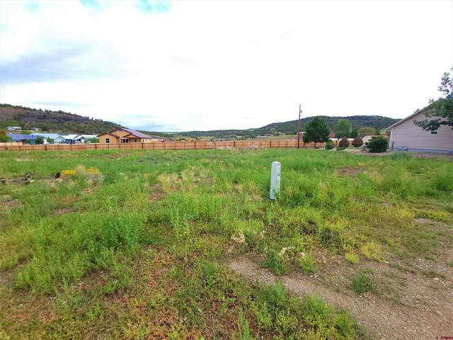 219 W Menefee Street, Mancos, CO 81328 (MLS #786484) :: Berkshire Hathaway HomeServices Western Colorado Properties