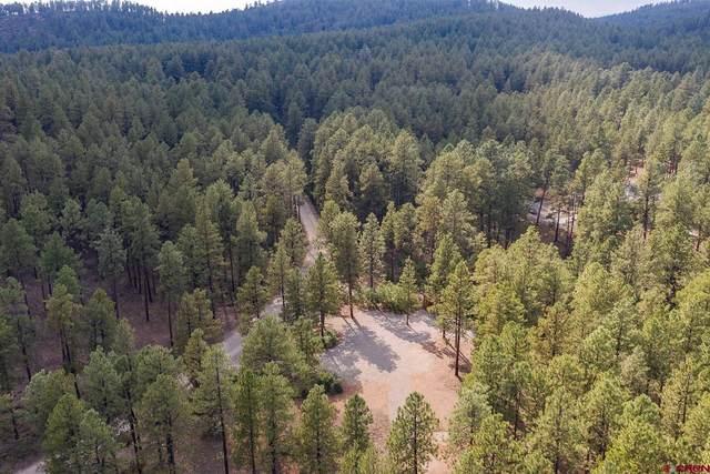 282 Pine Lane, Bayfield, CO 81122 (MLS #786519) :: The Howe Group   Keller Williams Colorado West Realty